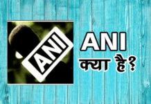 ANI क्या है कैसे काम करती है