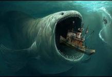 दुनिया की सबसे बड़ी मछली ब्लू व्हेल की फोटो और जानकारी